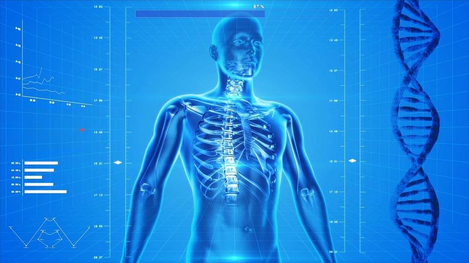 Neobične činjenice o ljudskom tijelu